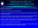 players involved in the implementation of cameroon s number one priority