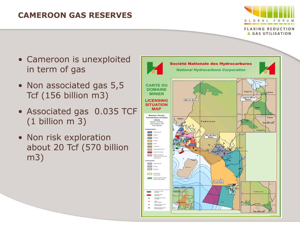 Cameroon is unexploited in term of gas