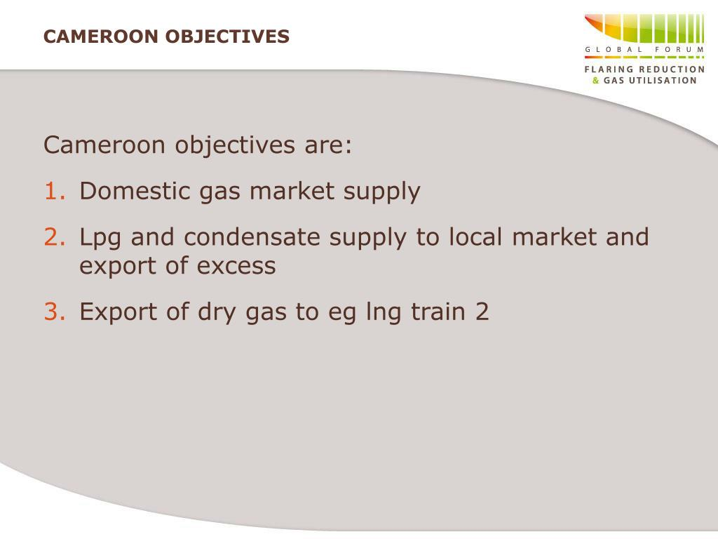 CAMEROON OBJECTIVES