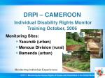 drpi cameroon individual disability rights monitor training october 2006