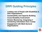 drpi guiding principles