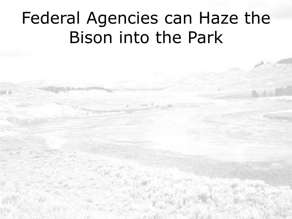 Federal Agencies can Haze the Bison into the Park