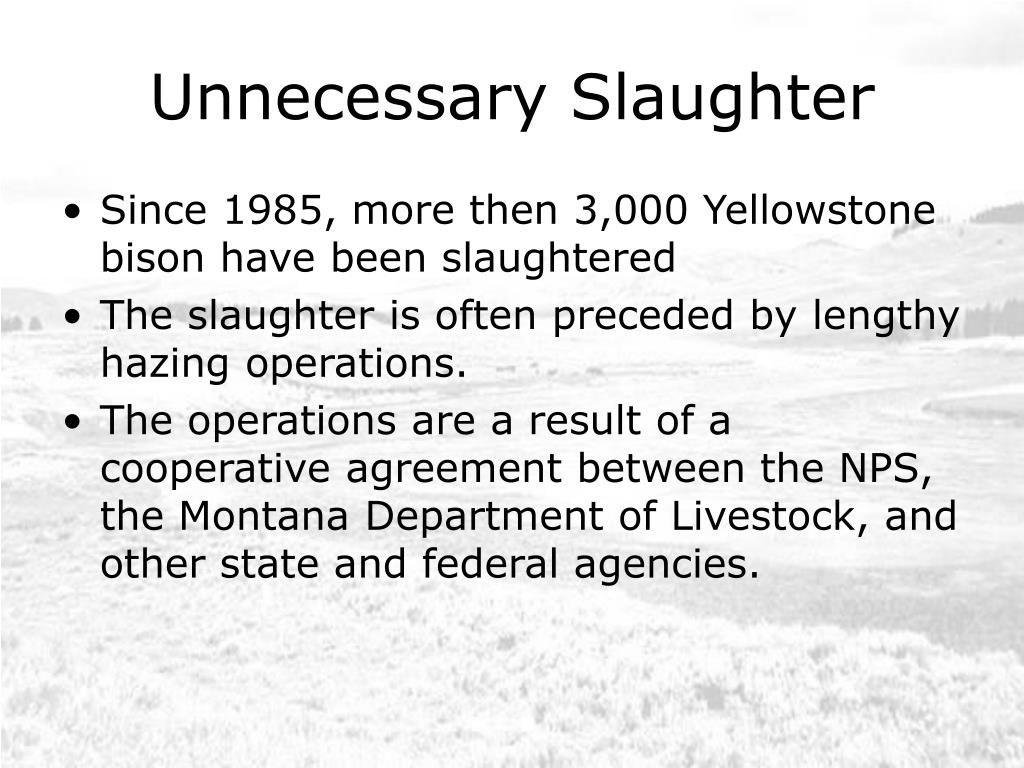 Unnecessary Slaughter