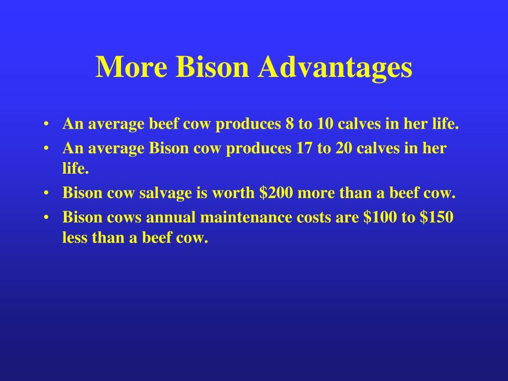 More Bison Advantages