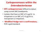 carbapenemases within the enterobacteriaceae