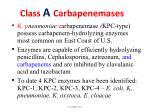 class a carbapenemases