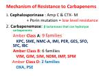 mechanism of resistance to carbapenems