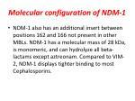 molecular configuration of ndm 1
