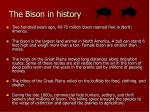 the bison in history