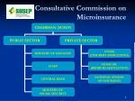consultative commission on microinsurance