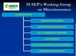 susep s working group on microinsurance