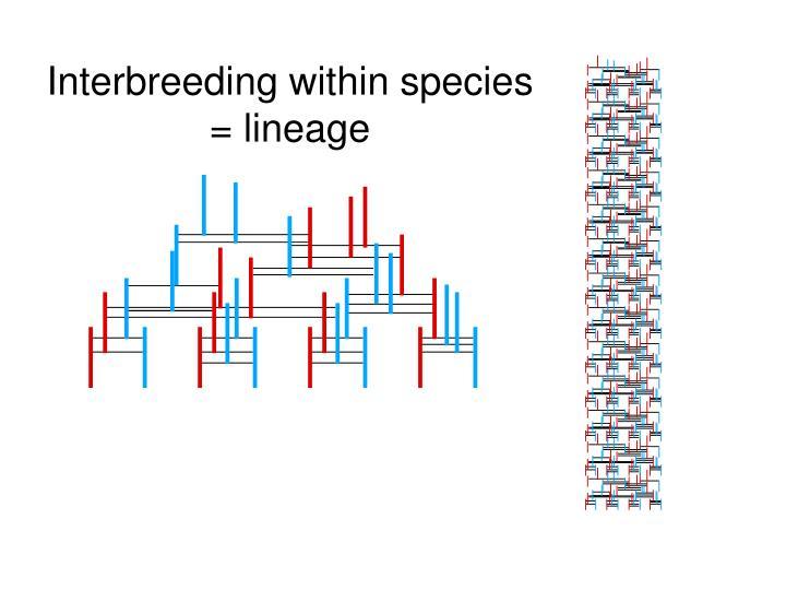 Interbreeding within species