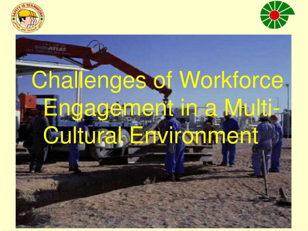 Challenges of Workforce Engagement in a Multi-Cultural Environment