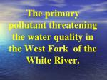 the primary pollutant threatening the water quality in the west fork of the white river