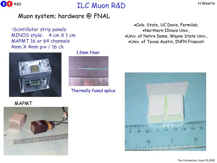 ILC Muon R&D