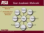 your academic molecule