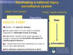 developing a national injury surveillance system