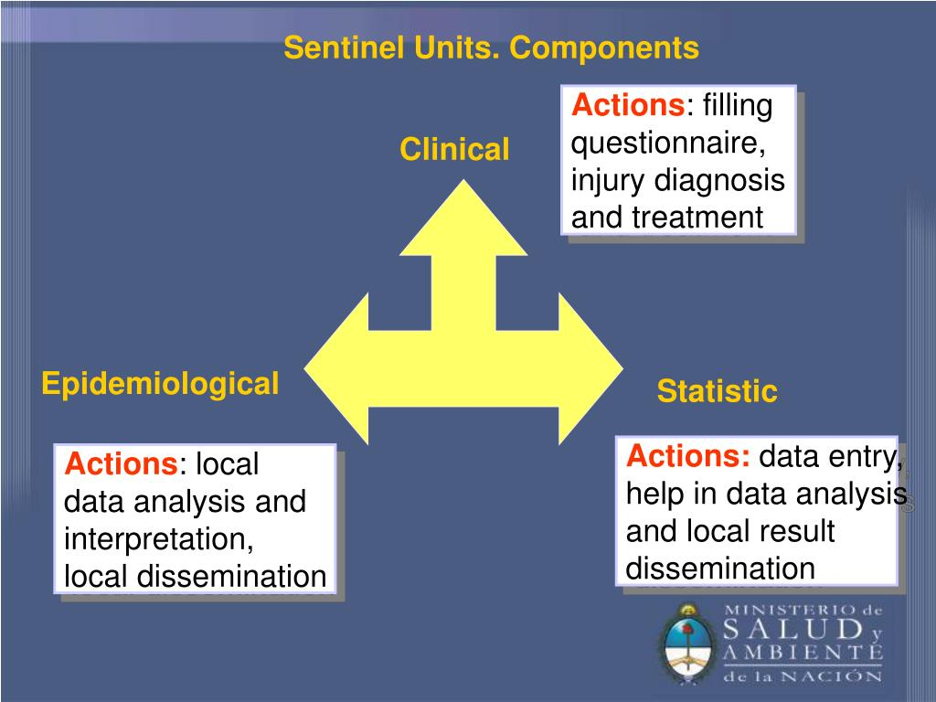 Sentinel Units. Components