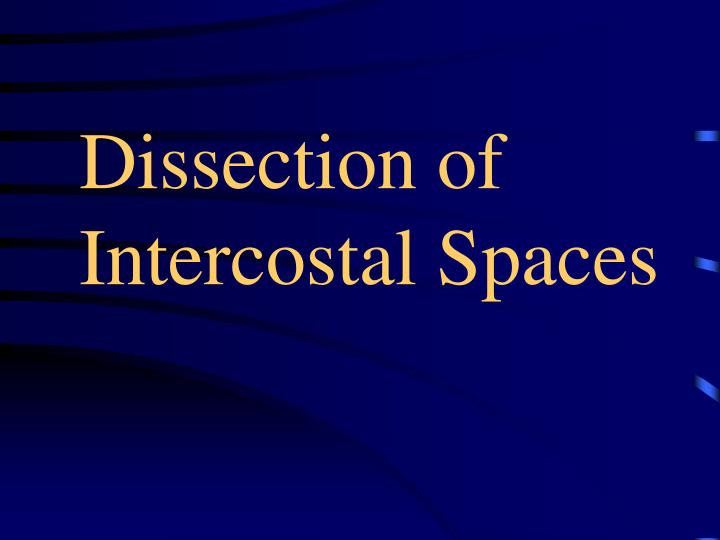 dissection of intercostal spaces n.