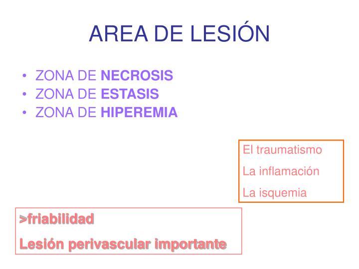 AREA DE LESIÓN