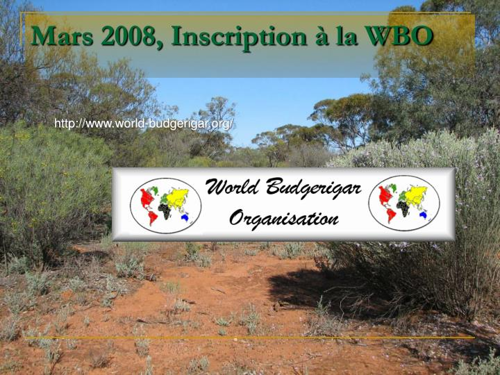 Mars 2008 inscription la wbo