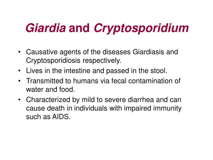 Giardia and cryptosporidium3