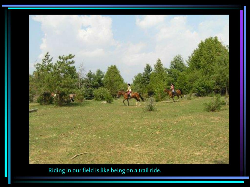 Riding in our field is like being on a trail ride.