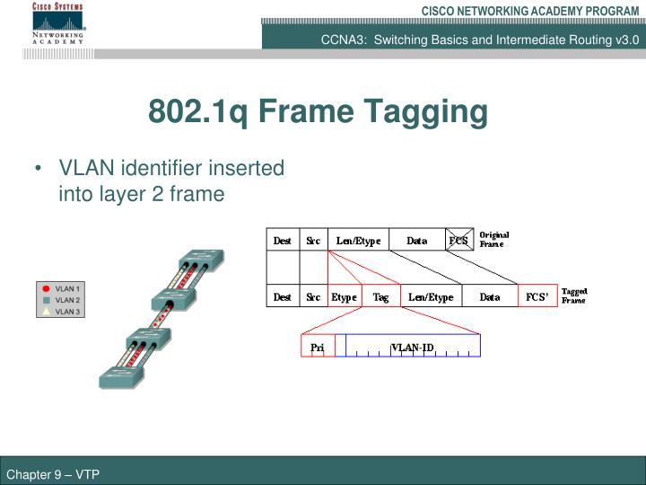 PPT - VLAN Trunking Protocol PowerPoint Presentation - ID:1051656