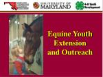 equine youth extension and outreach