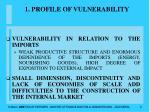1 profile of vulnerability6