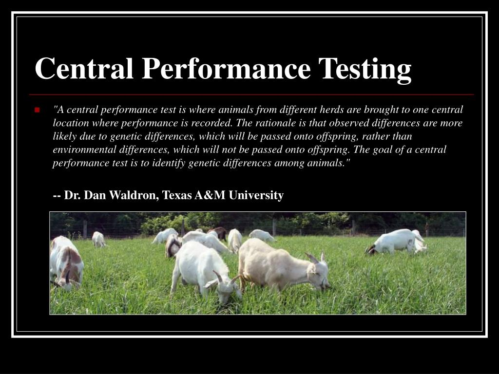Central Performance Testing