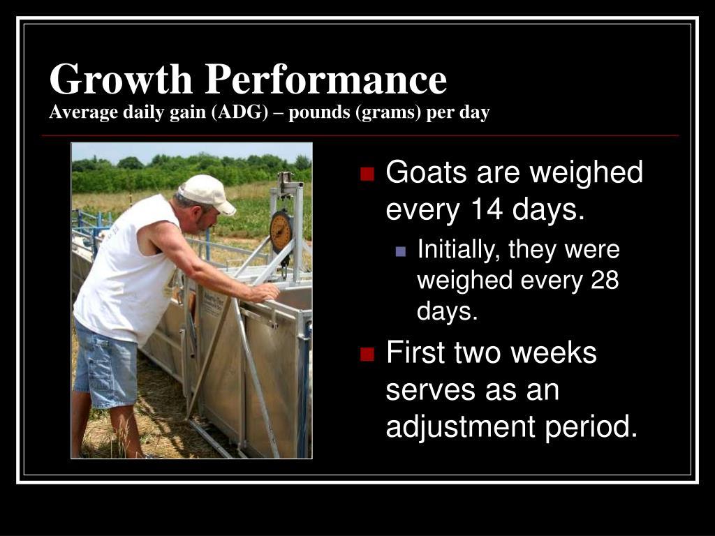 Growth Performance