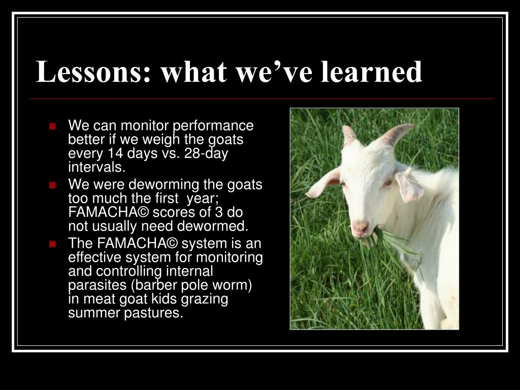 Lessons: what we've learned