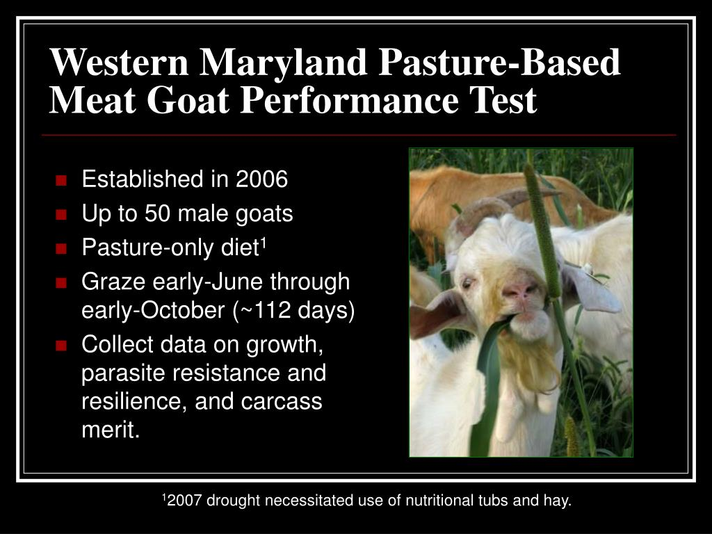 Western Maryland Pasture-Based Meat Goat Performance Test