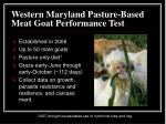western maryland pasture based meat goat performance test