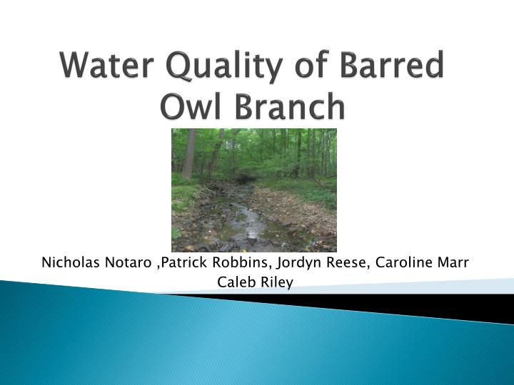 water quality of barred owl branch n.