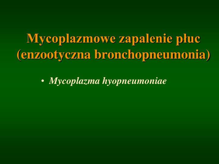 Mycoplazmowe zapalenie płuc          (enzootyczna bronchopneumonia)