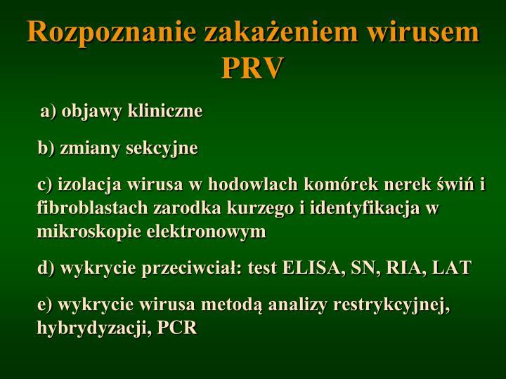 Rozpoznanie zakażeniem wirusem PRV