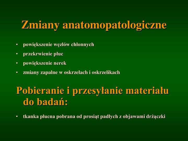 Zmiany anatomopatologiczne