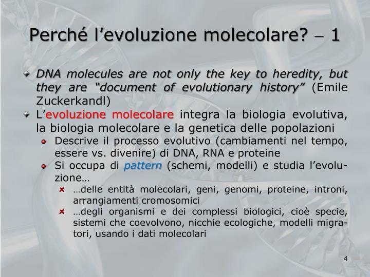 Perché l'evoluzione molecolare?
