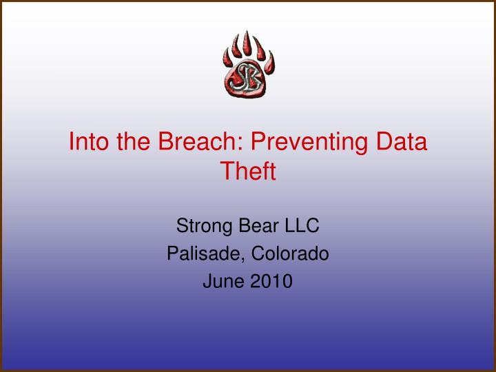 into the breach preventing data theft n.