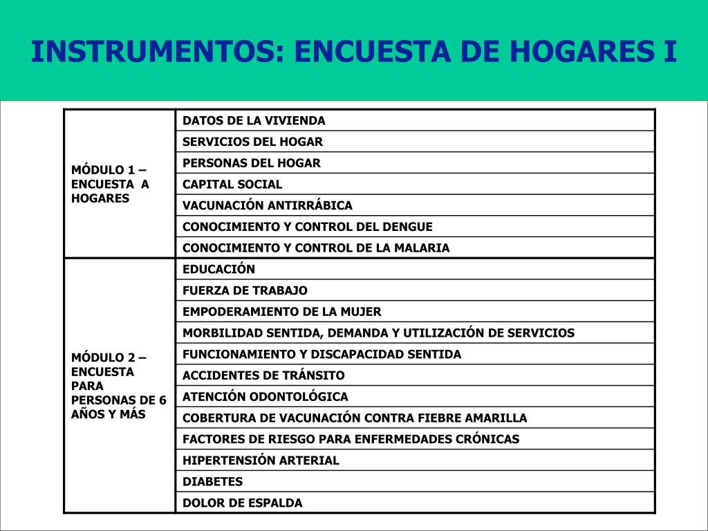 INSTRUMENTOS: ENCUESTA DE HOGARES I