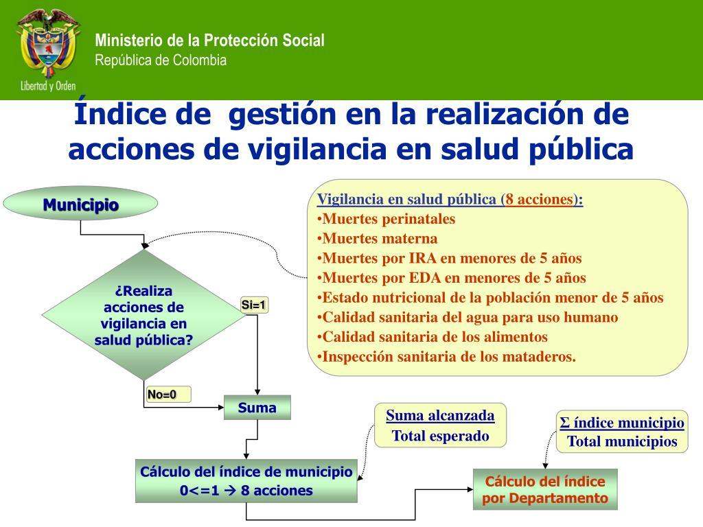 Vigilancia en salud pública (