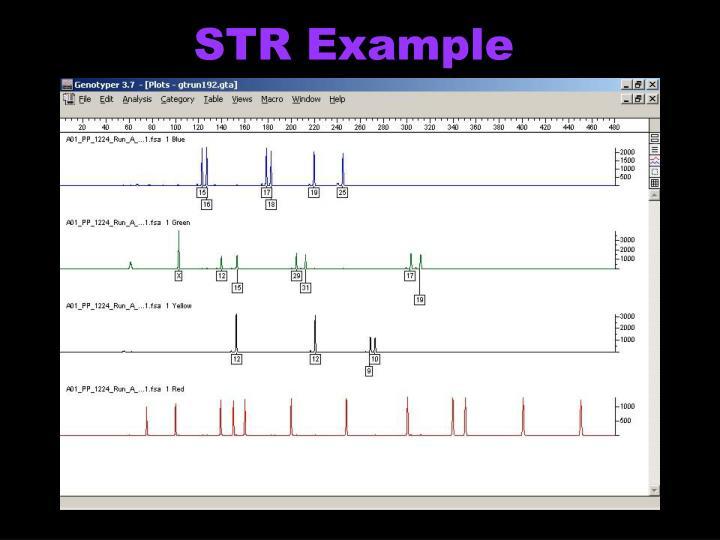 STR Example
