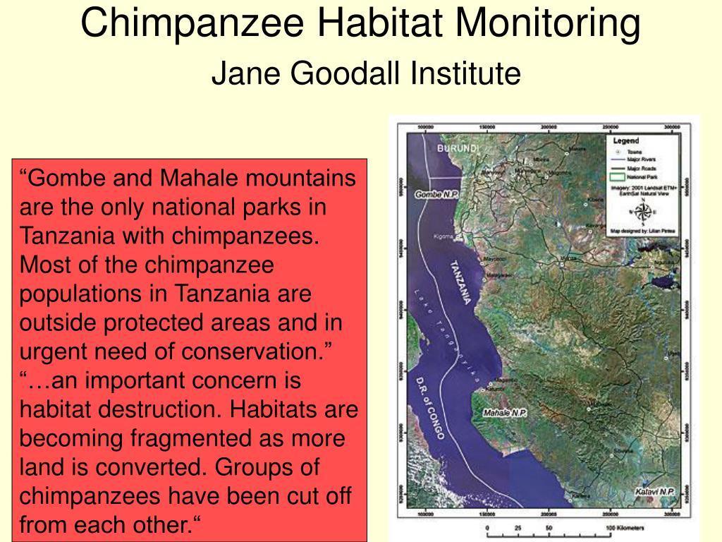 Chimpanzee Habitat Monitoring