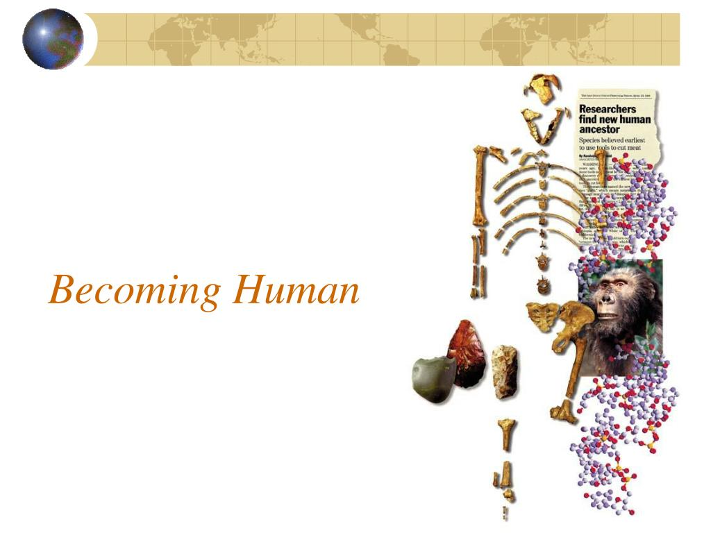 becoming human l.