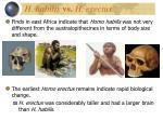 h habilis vs h erectus