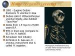 homo ergaster erectus