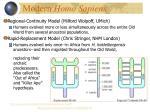 modern homo sapiens