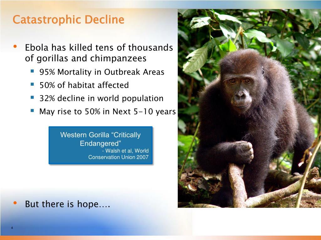 Catastrophic Decline